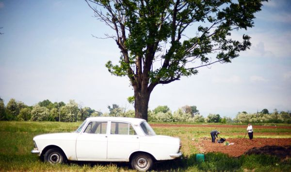 Bulgaria_campo